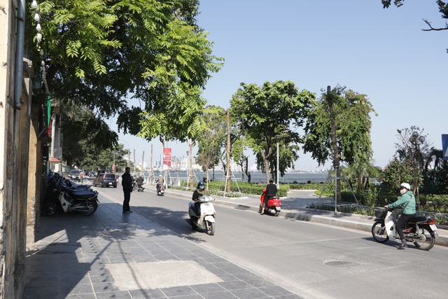 Hà Nội: Diện mạo mới của phố Trích Sài sau khi đánh chuyển 96 cây hoa sữa - 1