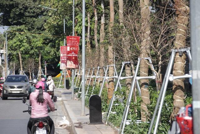 Hà Nội: Diện mạo mới của phố Trích Sài sau khi đánh chuyển 96 cây hoa sữa - 6