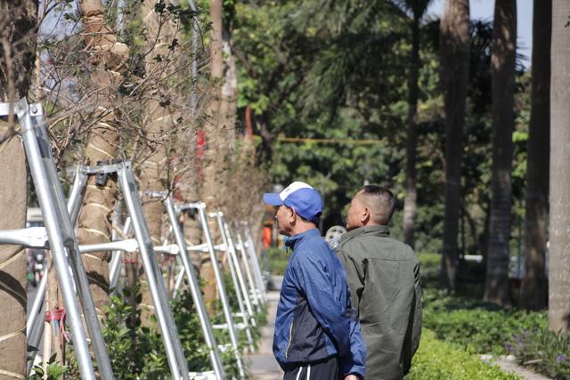 Hà Nội: Diện mạo mới của phố Trích Sài sau khi đánh chuyển 96 cây hoa sữa - 5