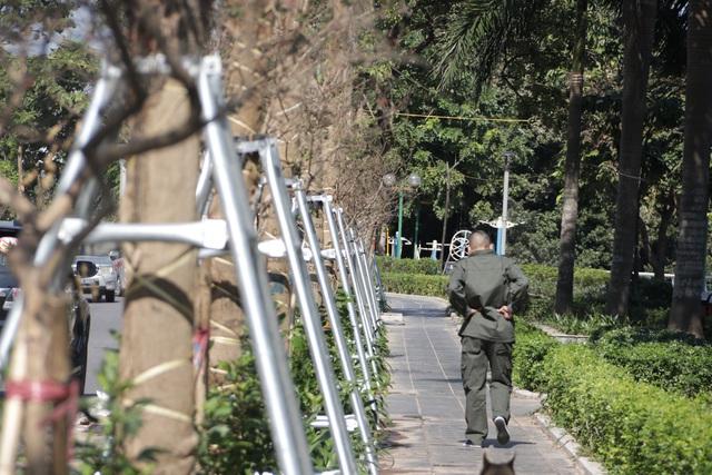 Hà Nội: Diện mạo mới của phố Trích Sài sau khi đánh chuyển 96 cây hoa sữa - 10