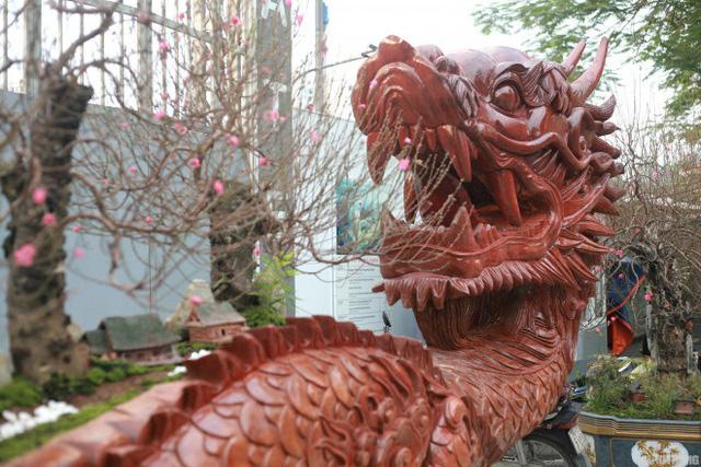 Ngắm chậu đào khủng Long quyện ngũ hành sơn giá bạc tỷ trên phố Hà Nội - 3
