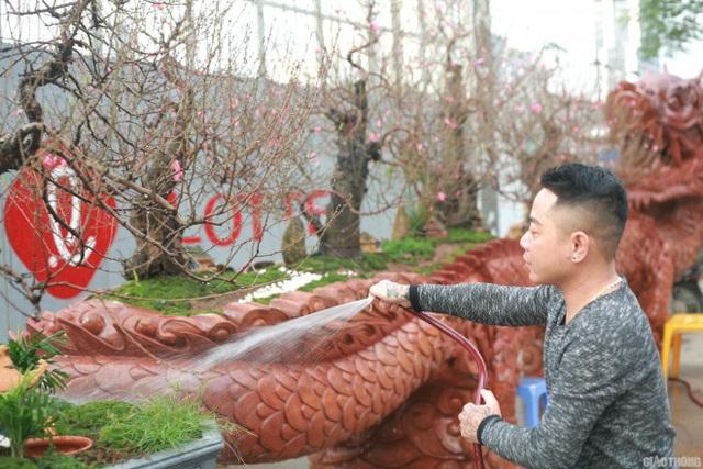 Ngắm chậu đào khủng Long quyện ngũ hành sơn giá bạc tỷ trên phố Hà Nội - 7