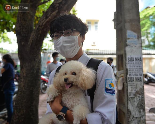 Chú chó Poodle đến đón cậu chủ đi thi về gây náo loạn cổng trường - Ảnh 3.