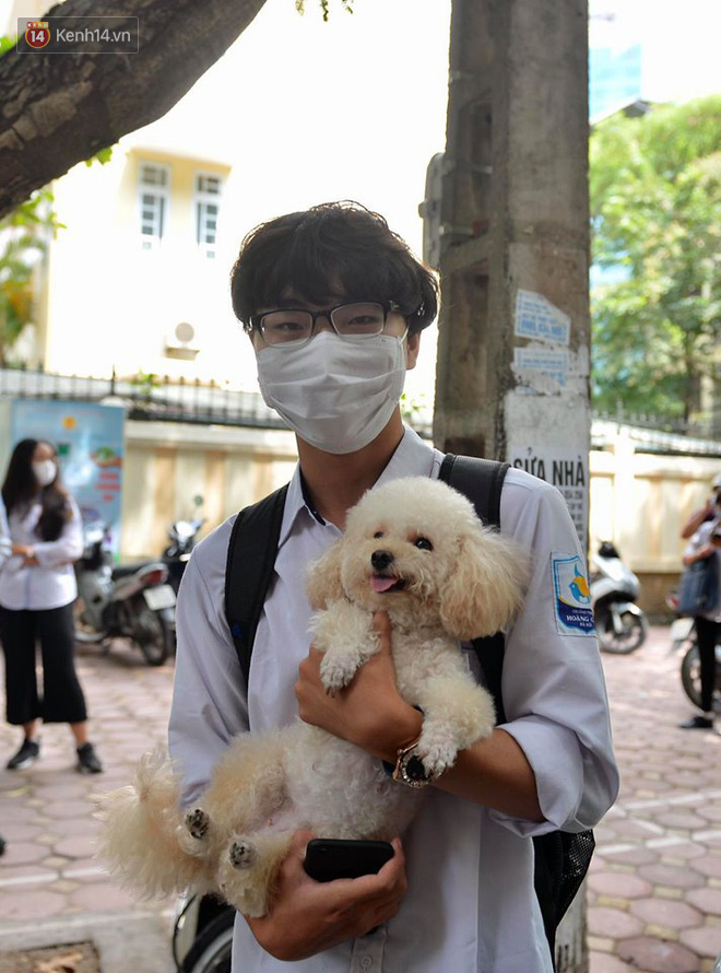 Chú chó Poodle đến đón cậu chủ đi thi về gây náo loạn cổng trường - Ảnh 2.