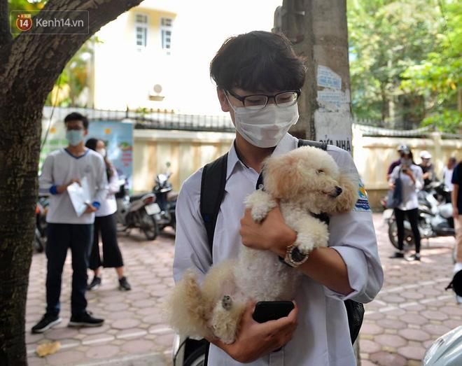 Chú chó Poodle đến đón cậu chủ đi thi về gây náo loạn cổng trường - Ảnh 1.
