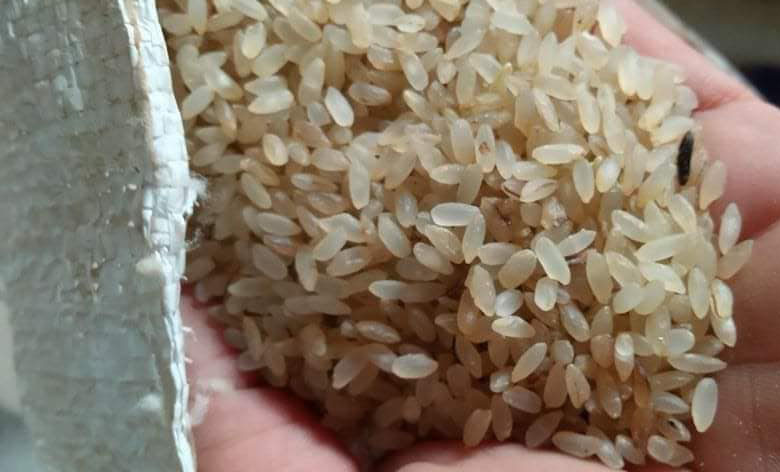 Đặc sản Yên Bái: Loại gạo ngậm sương, không dám phơi nắng - Ảnh 1.