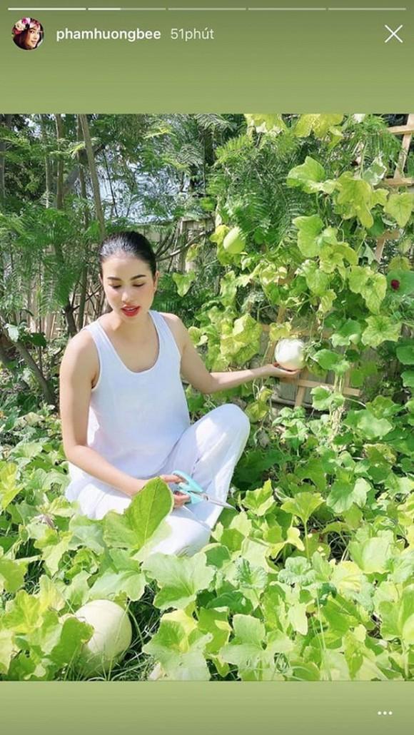 Phạm Hương khoe thân hình đầy đặn, Như Quỳnh 'gây sốt' khi đăng ảnh bên con gái - Ảnh 1.