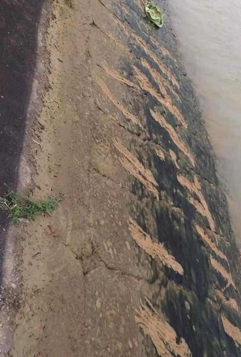 Ám ảnh những vết cào cấu trên bờ đê của cậu bé lớp 3 khi cố thoát khỏi dòng nước dữ - Ảnh 1.