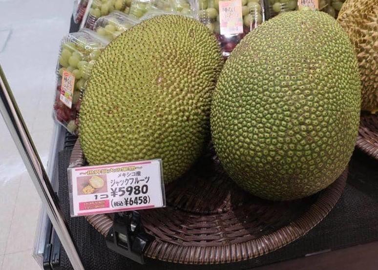 Bất ngờ với loại hạt người Việt ăn xong thường bỏ đi lại được coi là bổ dưỡng, bán 200.000 đồng/kg tại Nhật - Ảnh 2.