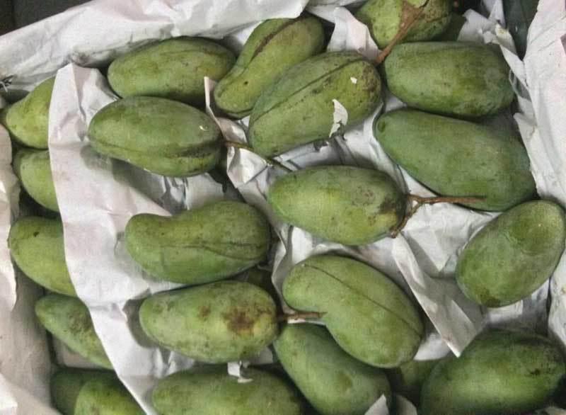 Trái cây dội chợ giá rẻ hơn rau, bán cả chục tấn/ngày - Ảnh 2.