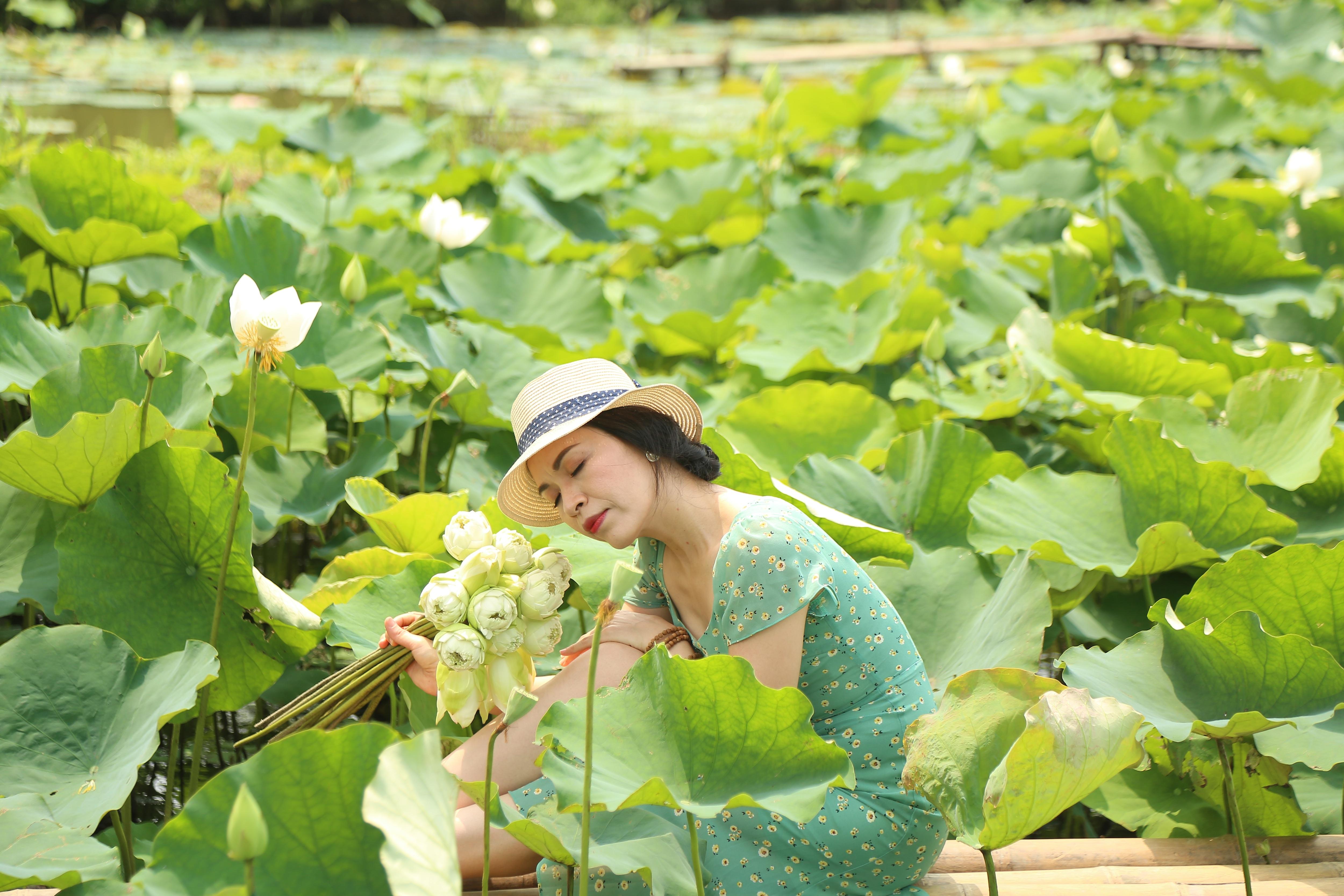 Hà Nội: Kiếm tiền triệu từ nghề trồng hoa sen trắng - Ảnh 8.