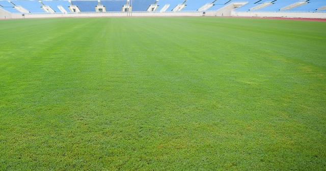 Khu LHTTQG Mỹ Đình: Cho thuê đất trái quy định, giá cỏ mặt sân gấp 6,23 lần so với thực tế - Ảnh 1.