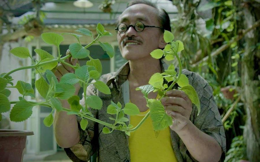 """Thăm khu vườn đầy ắp cây trái ở ngoại ô của NS Giang Còi, gần 1 tháng trước khi mất """"lão nông"""" vẫn say sưa trồng chanh"""