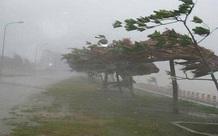 Tin mới nhất về cơn bão số 8
