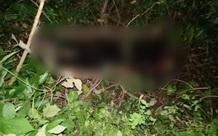 Hải Dương: Phát hiện thi thể nữ đang phân huỷ trong rừng, nghi là giáo viên mất tích hơn 1 tháng trước