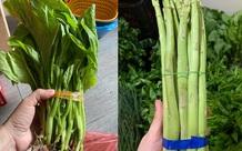 Chỉ 3 ngày không đi chợ, người dân choáng váng với giá rau cải mơ 50.000 đồng/kg