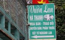 Lời khai của chủ vườn lan đột biến ở Hà Nội bị tố ôm 200 tỷ đồng bỏ trốn