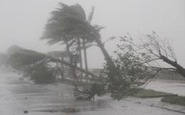 Đường đi của cơn bão số 8
