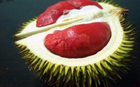 4 loại quả ruột đỏ giá 'chát' vẫn được giới sành ăn lùng mua